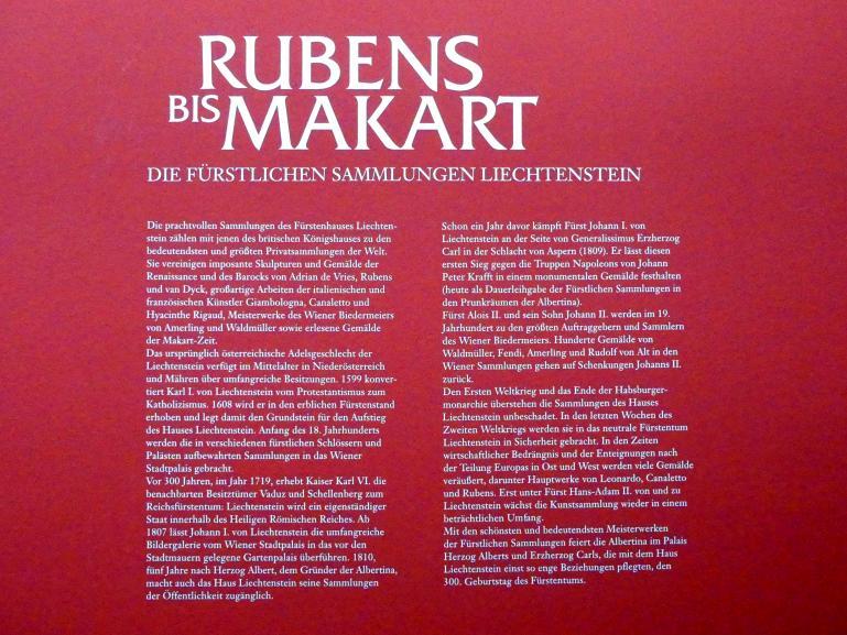 """Wien, Albertina, Ausstellung """"Die fürstliche Sammlung Liechtenstein"""" vom 16.2.-10.6.2019, Bild 3/4"""