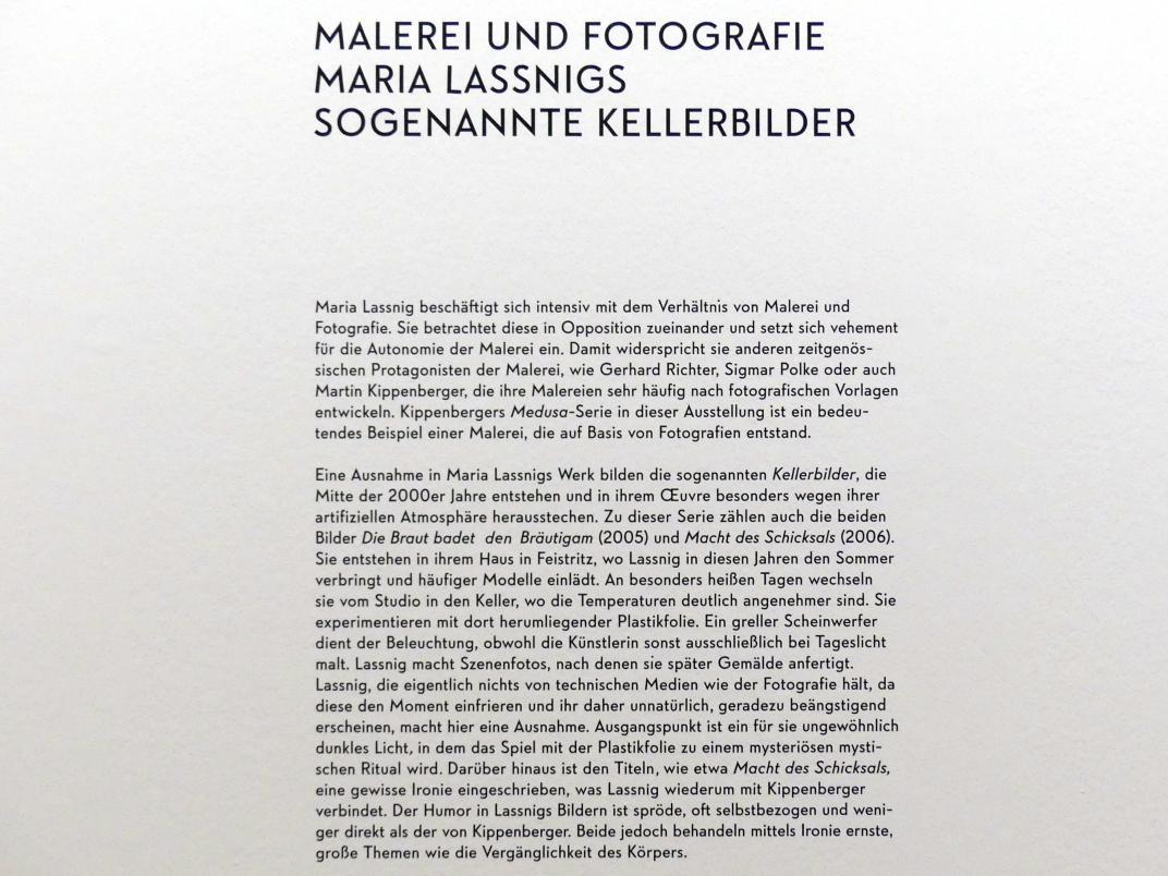 """München, Lenbachhaus, Kunstbau, Ausstellung """"BODY CHECK"""" vom 21.5.-15.9.2019, Bild 15/19"""