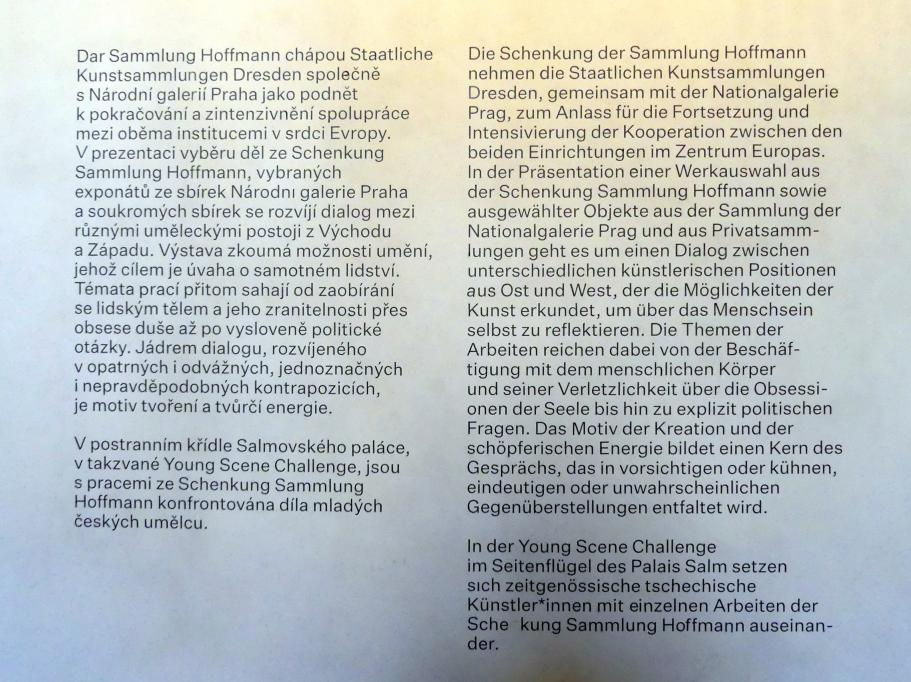 """Prag, Nationalgalerie im Salm-Palast, Ausstellung """"Möglichkeiten des Dialogs"""" vom 2.12.2018-1.12.2019, Bild 8/11"""