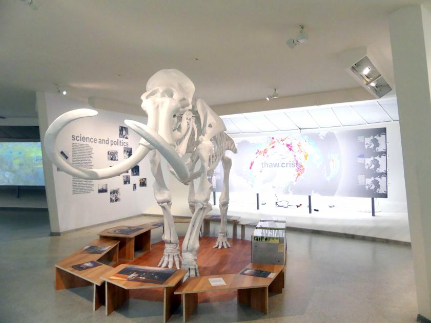 New York, Solomon R. Guggenheim Museum, Bild 56/72