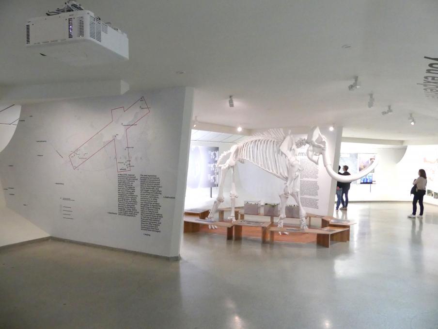 New York, Solomon R. Guggenheim Museum, Bild 59/72