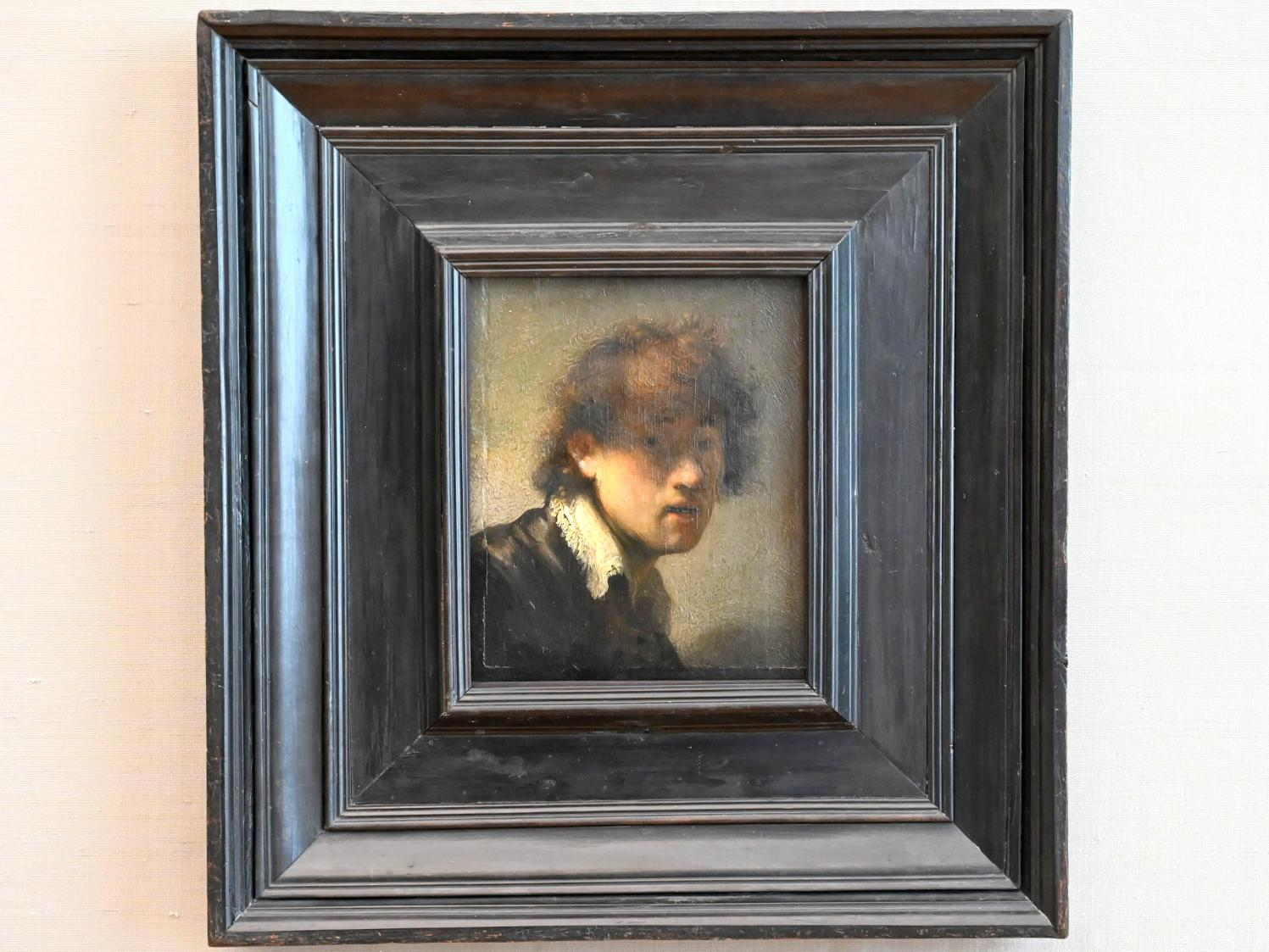 Rembrandt (Rembrandt Harmenszoon van Rijn): Selbstbildnis, 1629