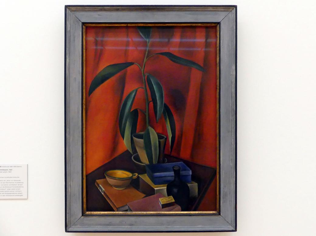 Alexander Kanoldt: Stillleben mit Gummibaum, 1921