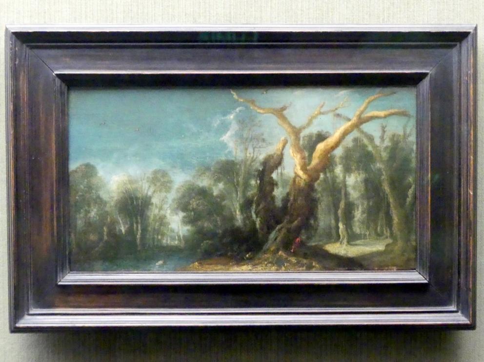 Jacob Jacobsz. van Geel: Waldige Landschaft, Undatiert