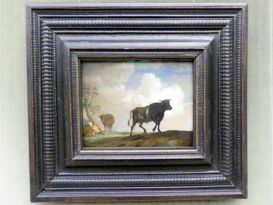 Paulus Potter: Der Stier, 1649, Bild 1/2