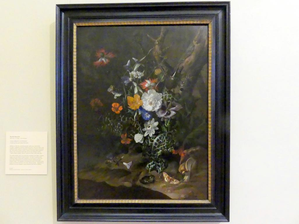 Rachel Ruysch: Waldszene mit Blumen, Undatiert