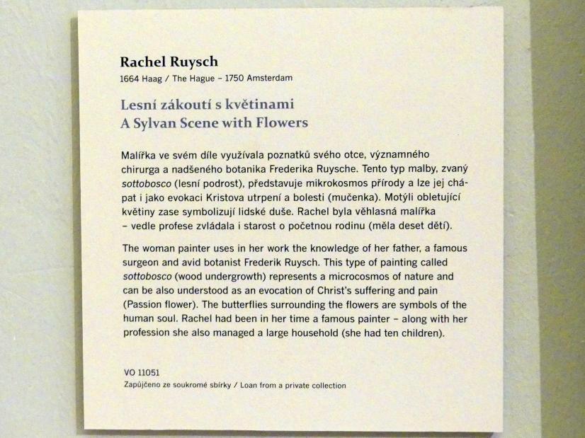 Rachel Ruysch: Waldszene mit Blumen, Undatiert, Bild 2/2