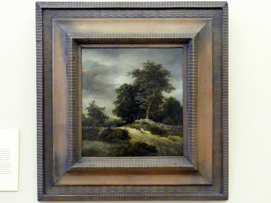 Jacob van Ruisdael: Pfad zwischen Bäumen, Undatiert