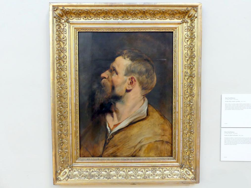 Peter Paul Rubens: Studie eines Mannes im Profil, 1611 - 1612