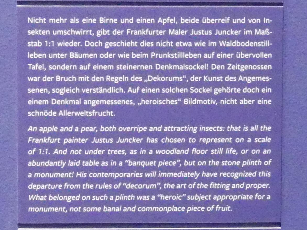Justus Juncker: Stillleben mit Birne und Insekten, 1765, Bild 4/5