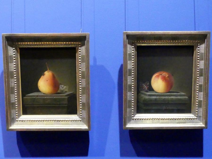 Justus Juncker: Stillleben mit Apfel und Insekten, 1765, Bild 2/5