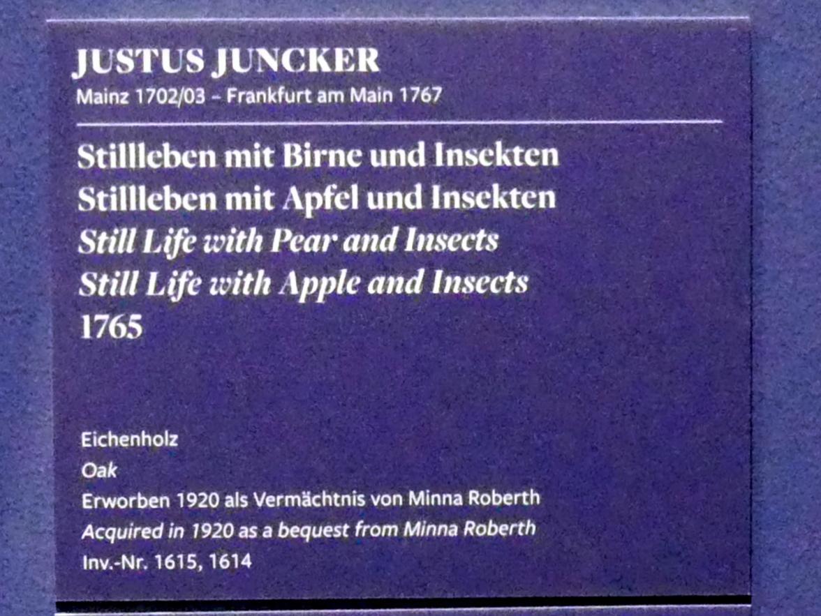 Justus Juncker: Stillleben mit Apfel und Insekten, 1765, Bild 3/5