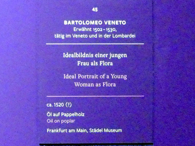 Bartolomeo Veneto: Idealbildnis einer jungen Frau, um 1520, Bild 2/3