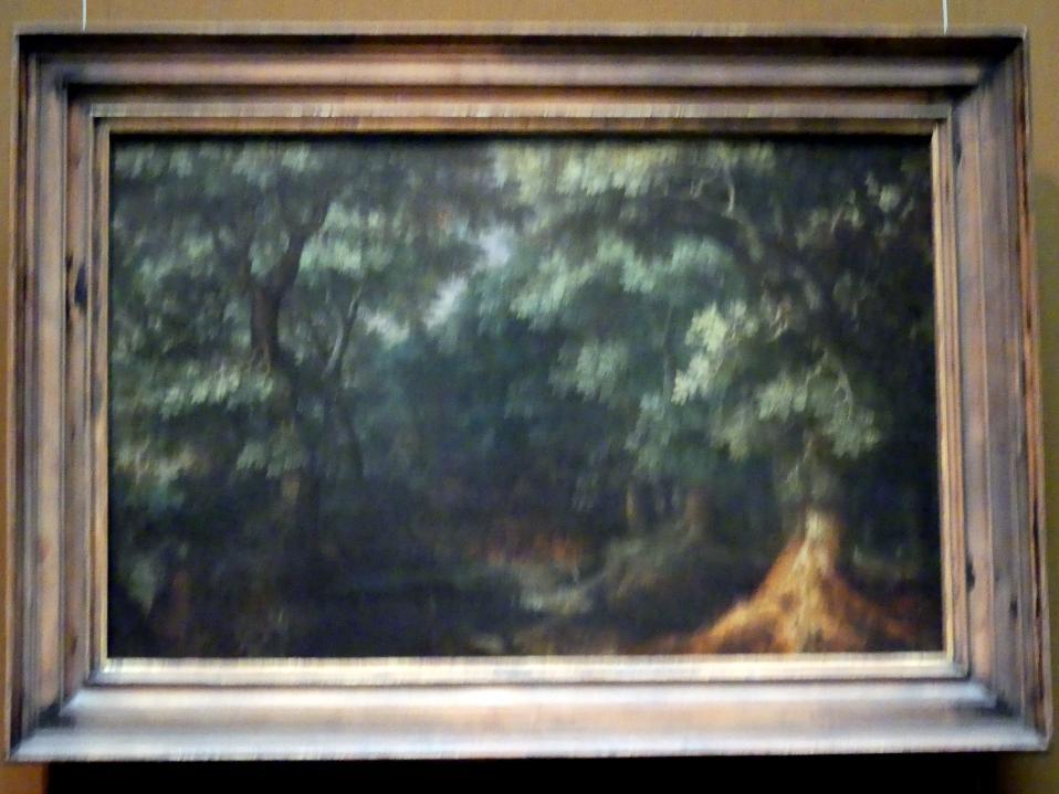 Gillis van Coninxloo: Waldlandschaft, Um 1600