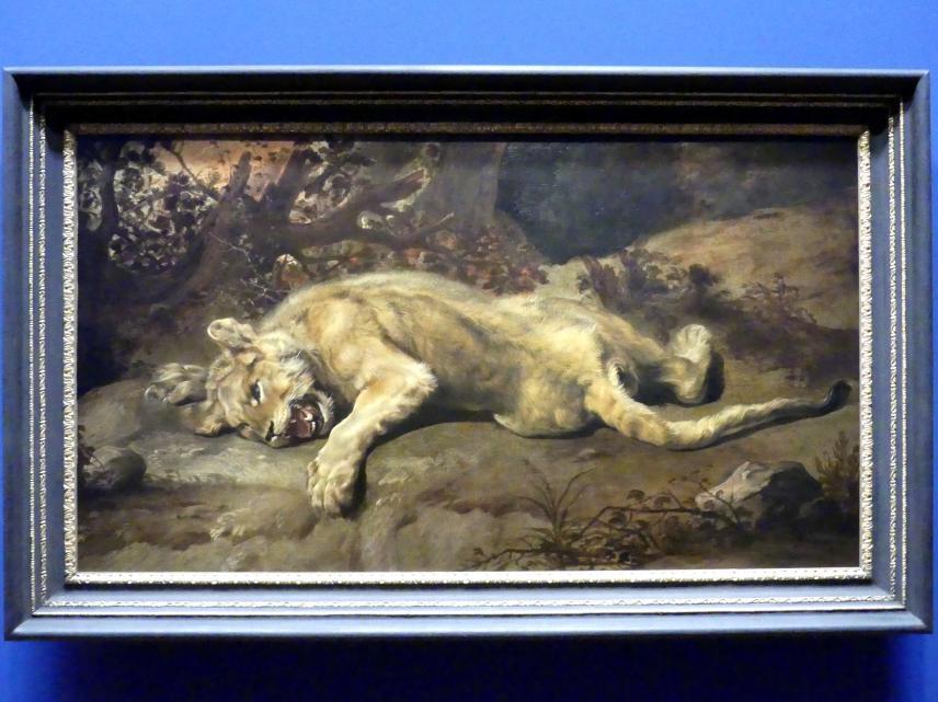 Frans Snyders: Liegende Löwin, um 1620 - 1630