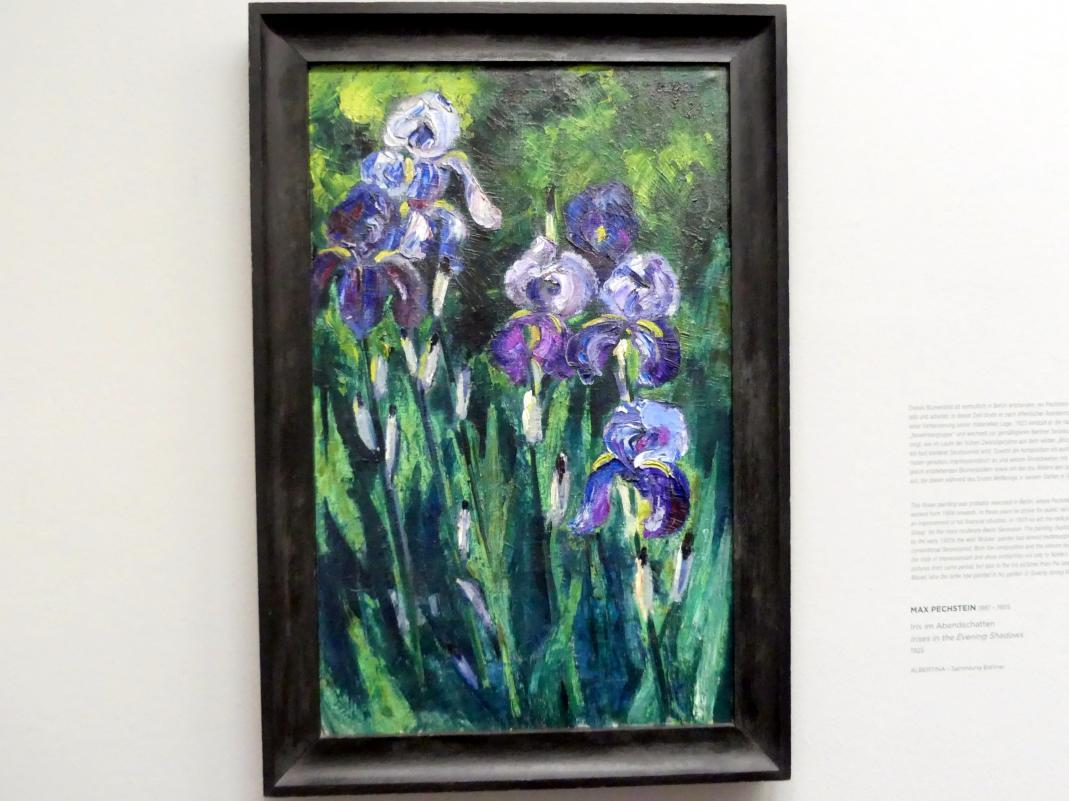 Max Pechstein: Iris im Abendschatten, 1925