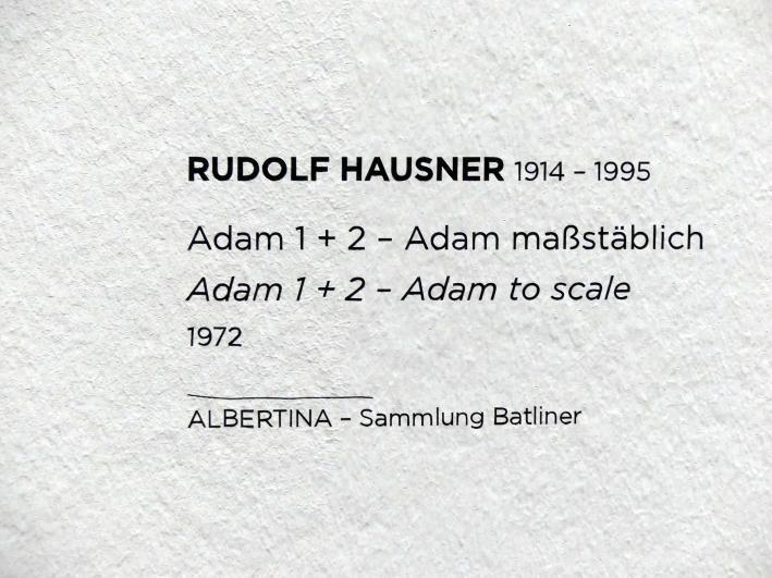 Rudolf Hausner: Adam 1 + 2 - Adam maßstäblich, 1972, Bild 2/2