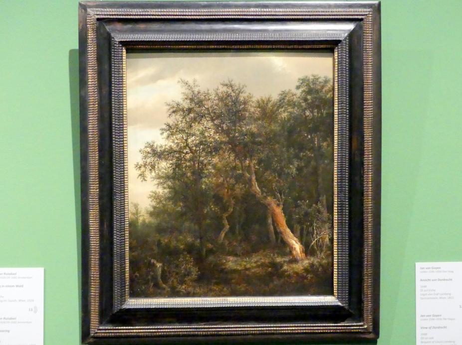 Jacob van Ruisdael: Lichtung in einem Wald, 1646