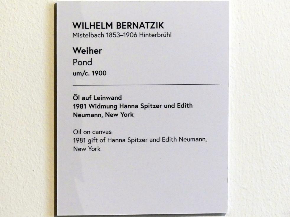 Wilhelm Bernatzik: Weiher, um 1900, Bild 2/2