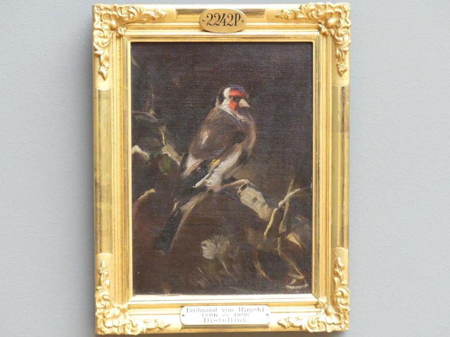 Ferdinand von Rayski: Ein Distelfink, 1836 - 1839