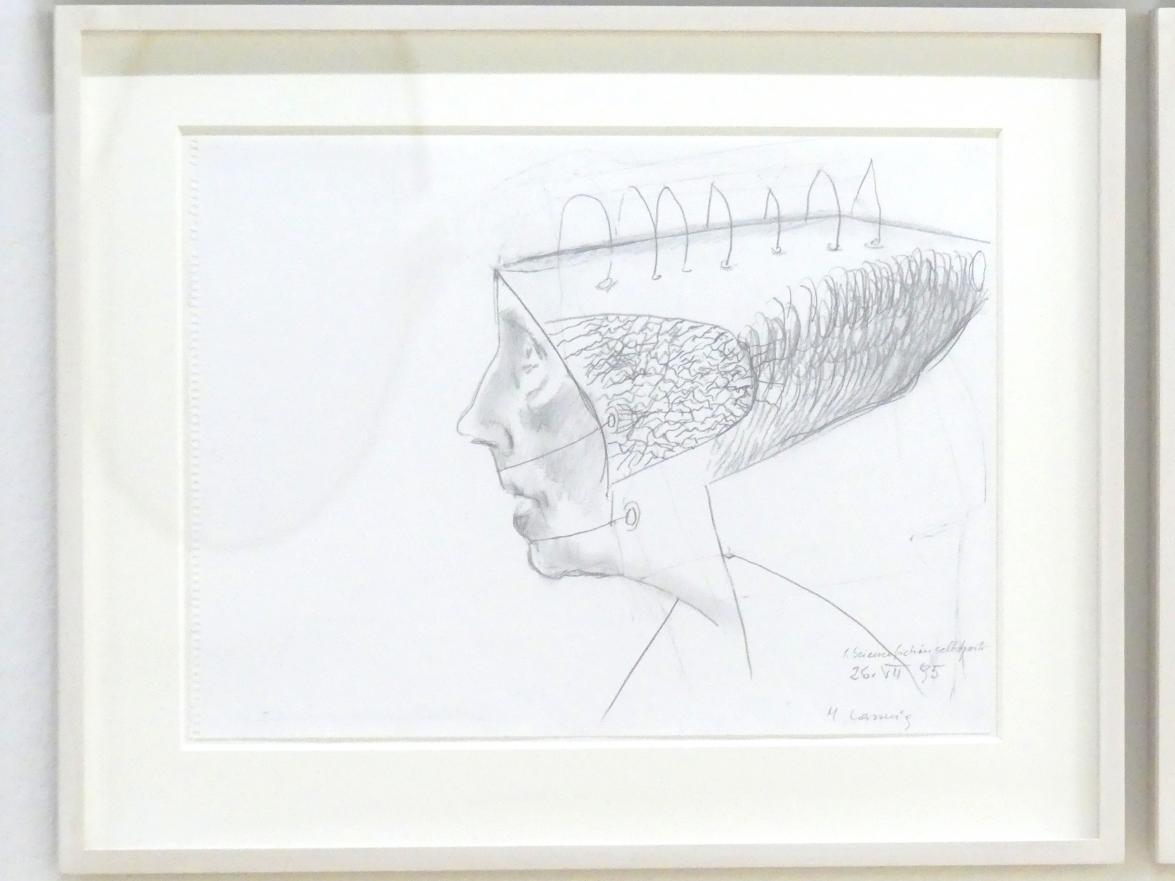 Maria Lassnig: 1. Sciencefictionselbstportrait, 1995