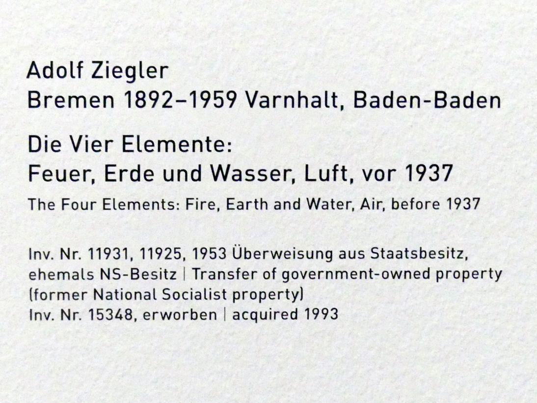 Ziegler Vier Elemente