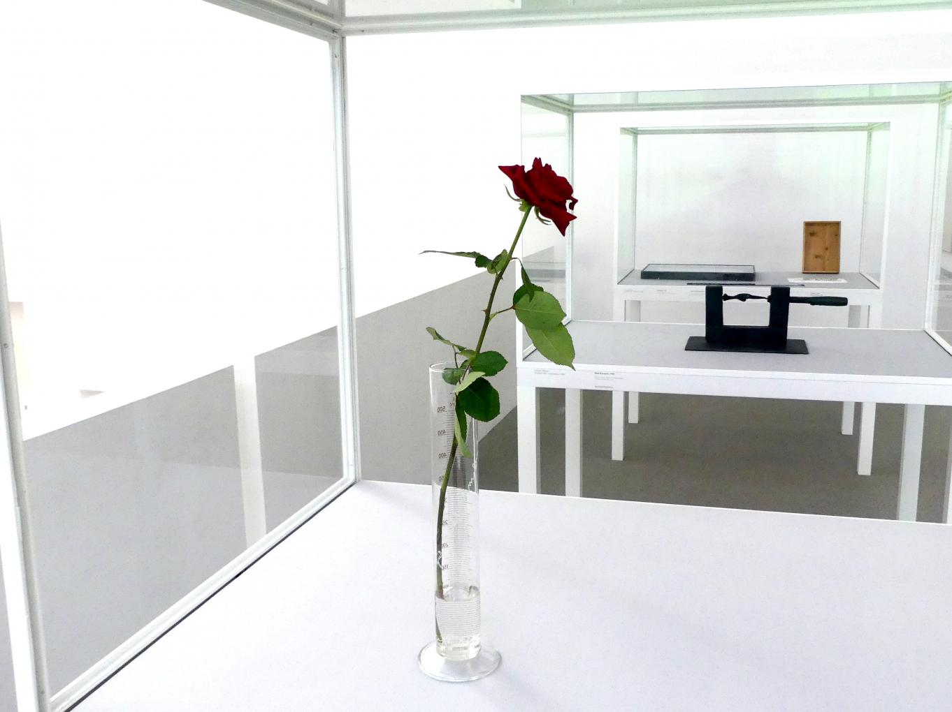 Joseph Beuys: Rose für direkte Demokratie, 1973