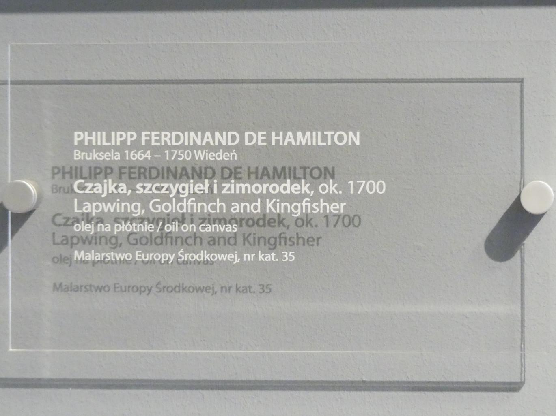 Philipp Ferdinand de Hamilton: Kiebitz, Stieglitz und Eisvogel, Um 1700