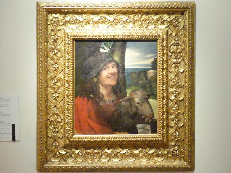 Giovanni Luteri (Dosso Dossi): Porträt eines Hofnarrs, um 1508 - 1510