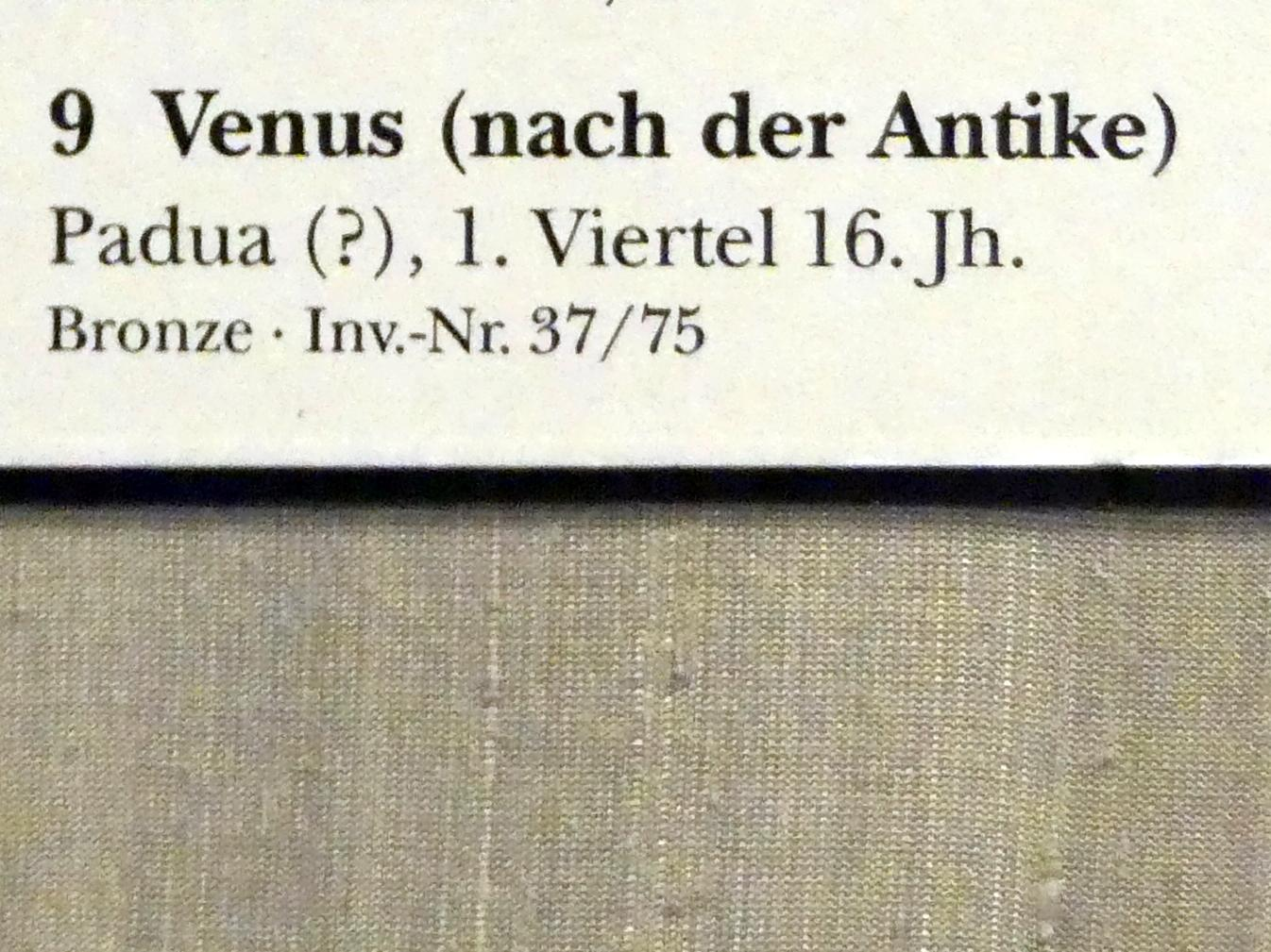 Venus, 1. Viertel 16. Jhd., Bild 2/2