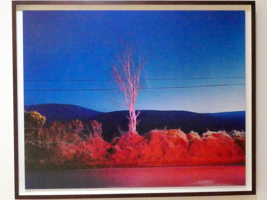 Gerard Byrne: A country road, a tree. Evening. Somewhere between Tonygarrow and Cloon Wood, below Prince Williams Seat, Glencree, Co. Wicklow, 2007