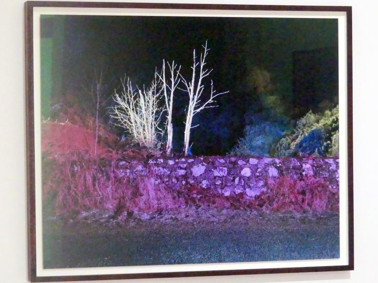 Gerard Byrne: A country road, a tree. Evening. At the bridge where lough bray lower drains into the Glencree River, Co. Wicklow, 2007