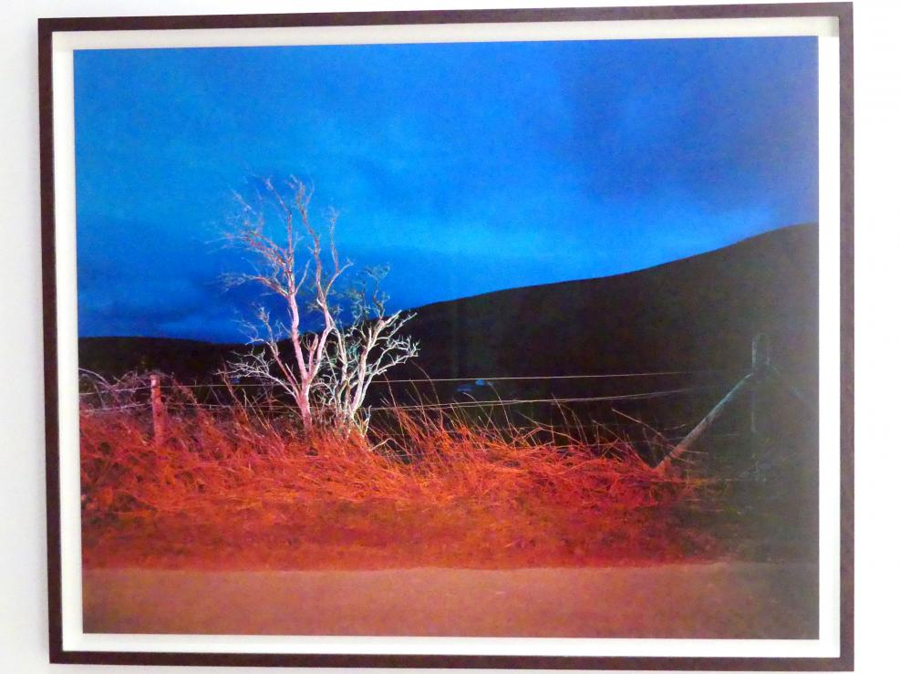 Gerard Byrne: A country road, a tree. Evening. Beside Knocktee looking forward towards Crone and Bahana, Glencree, Co. Wicklow, 2007