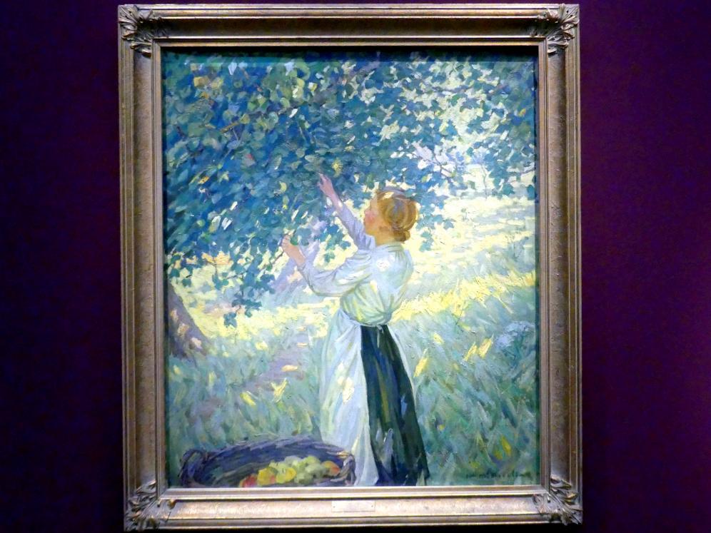 Helen McNicoll: Die Apfelpflückerin, Um 1911