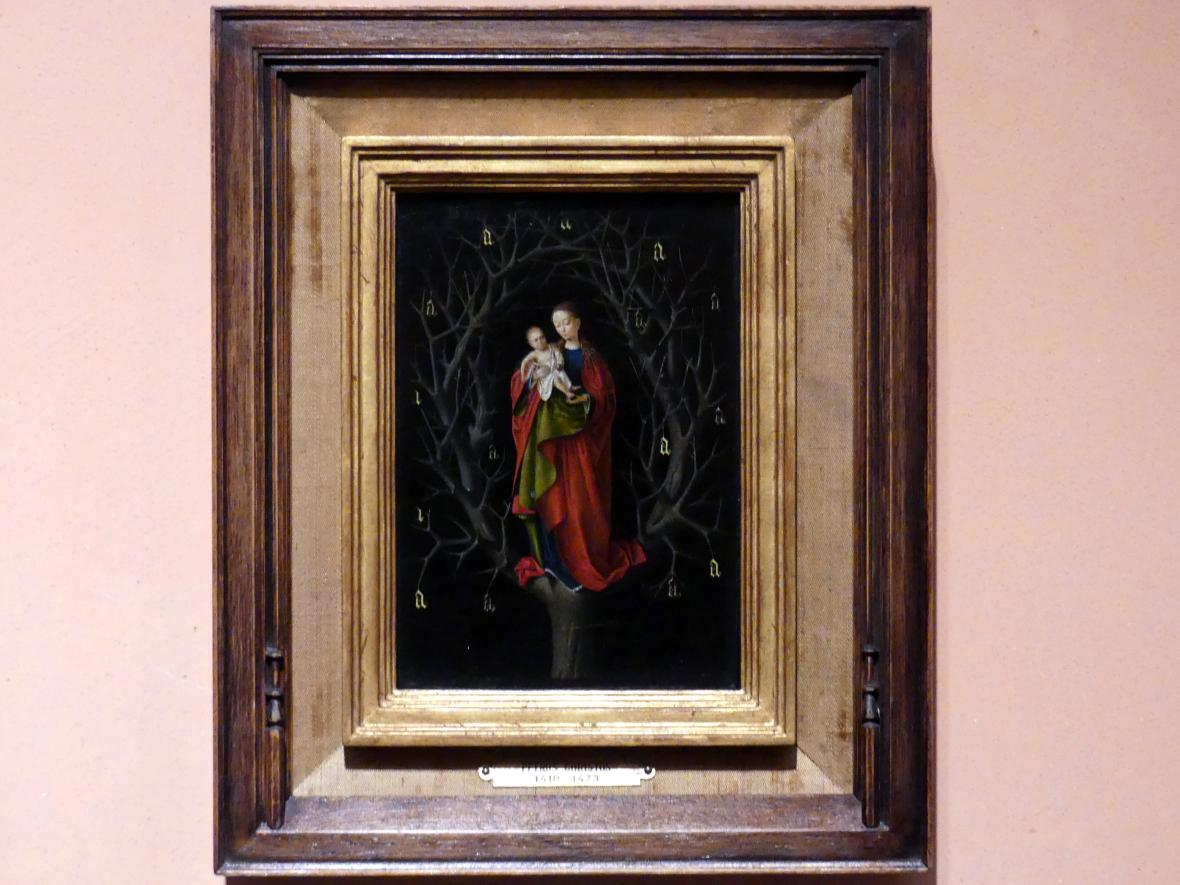 Petrus Christus: Madonna vom trockenen Baum, um 1465