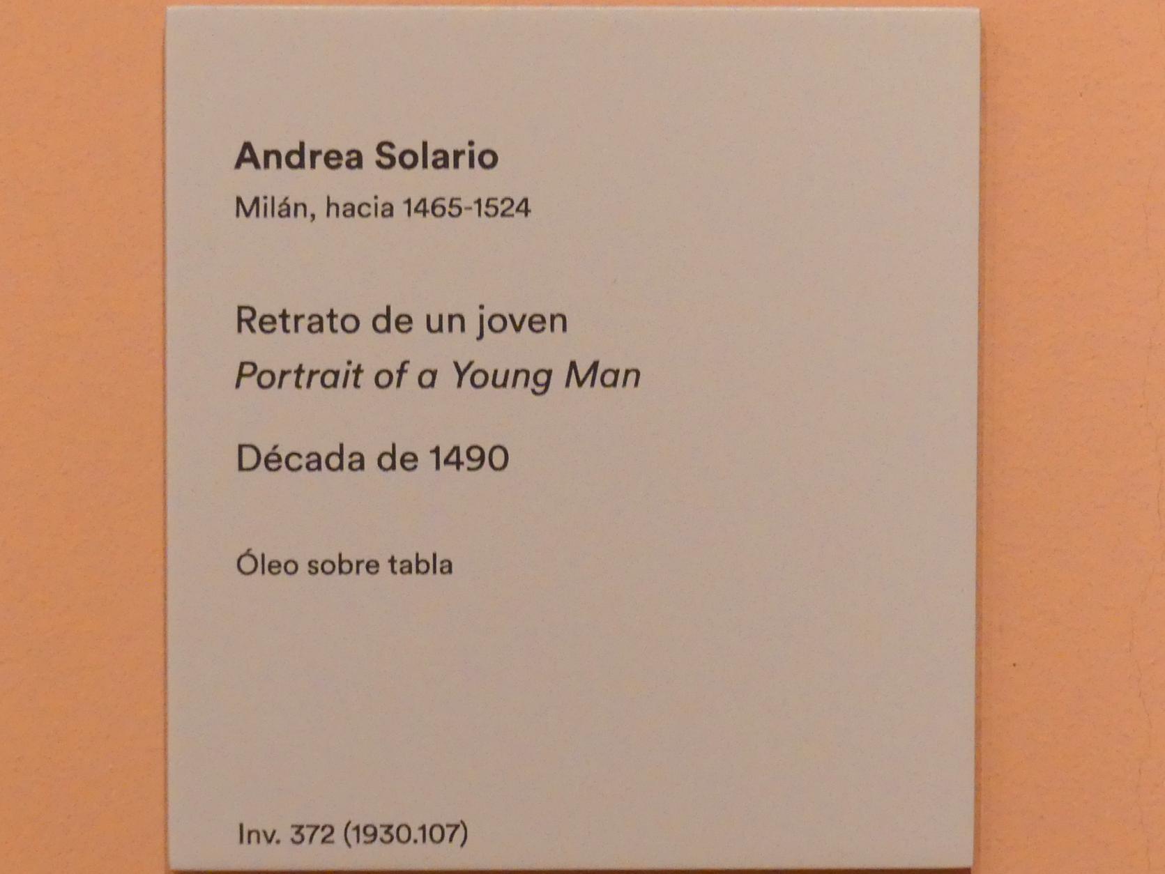 Andrea Solari: Porträt eines jungen Mannes, um 1490 - 1500, Bild 2/2