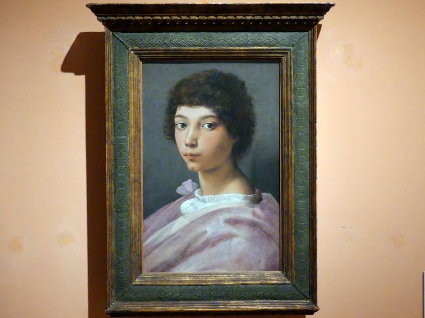 Raffaello Santi (Raffael): Porträt eines jungen Mannes, um 1518 - 1519