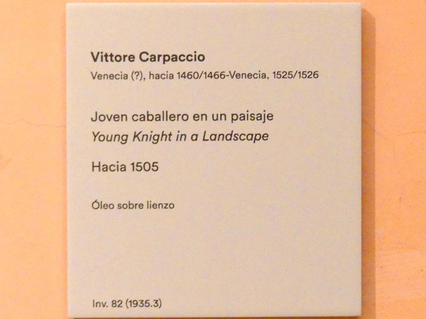 Vittore Carpaccio: Junger Ritter in einer Landschaft, um 1505, Bild 2/2