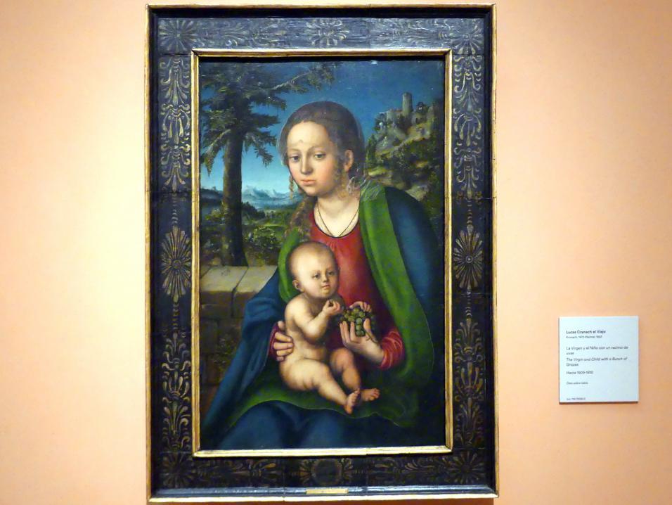 Lucas Cranach der Ältere: Maria mit dem Kind und der Weintraube, um 1509 - 1510