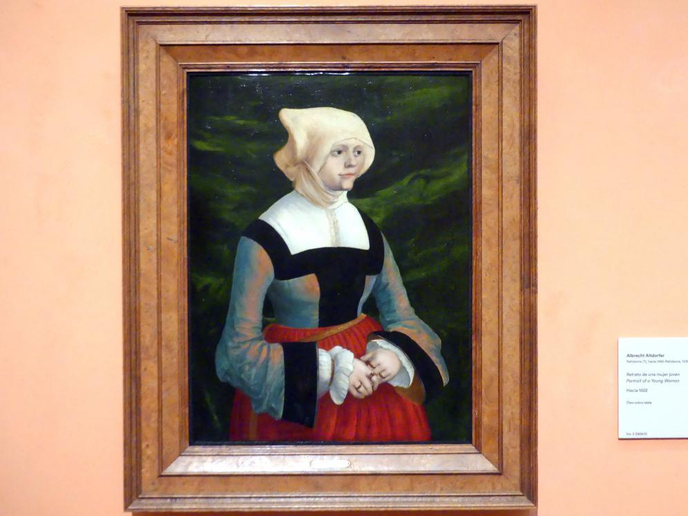 Albrecht Altdorfer: Porträt einer jungen Frau, um 1522