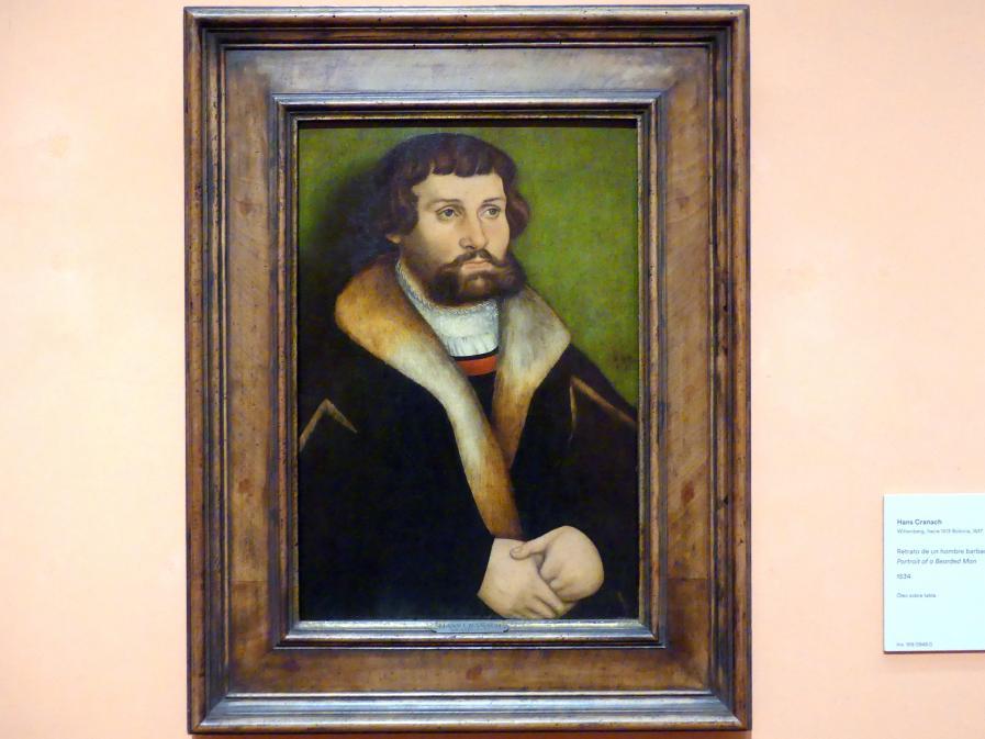 Hans Cranach: Porträt eines bärtigen Mannes, 1534