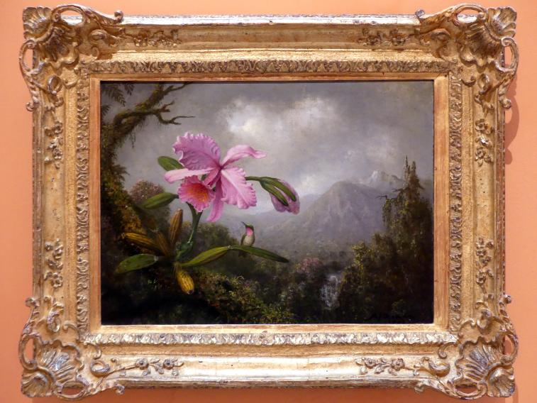 Martin Johnson Heade: Orchidee und Kolibri bei einem Gebirgswasserfall, 1902