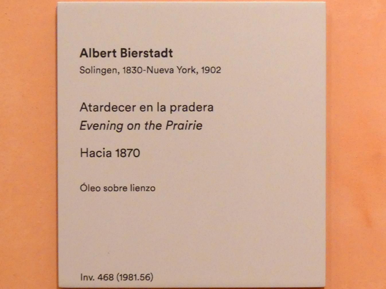 Albert Bierstadt: Abends in der Prärie, um 1870, Bild 2/2