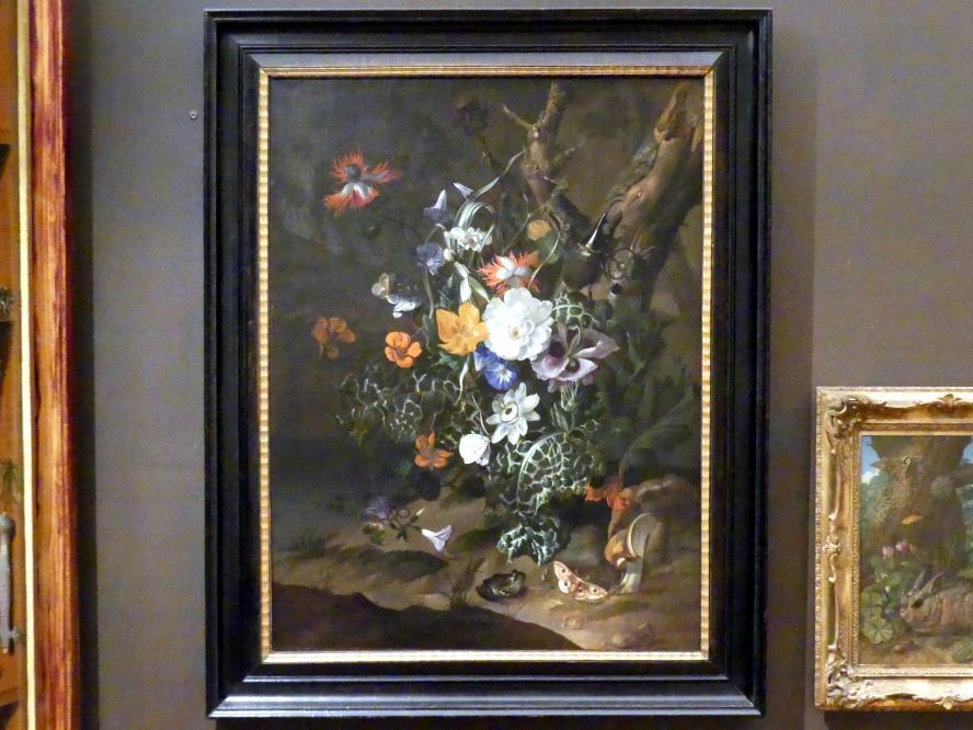 Rachel Ruysch: Waldstück mit Blumen, Undatiert