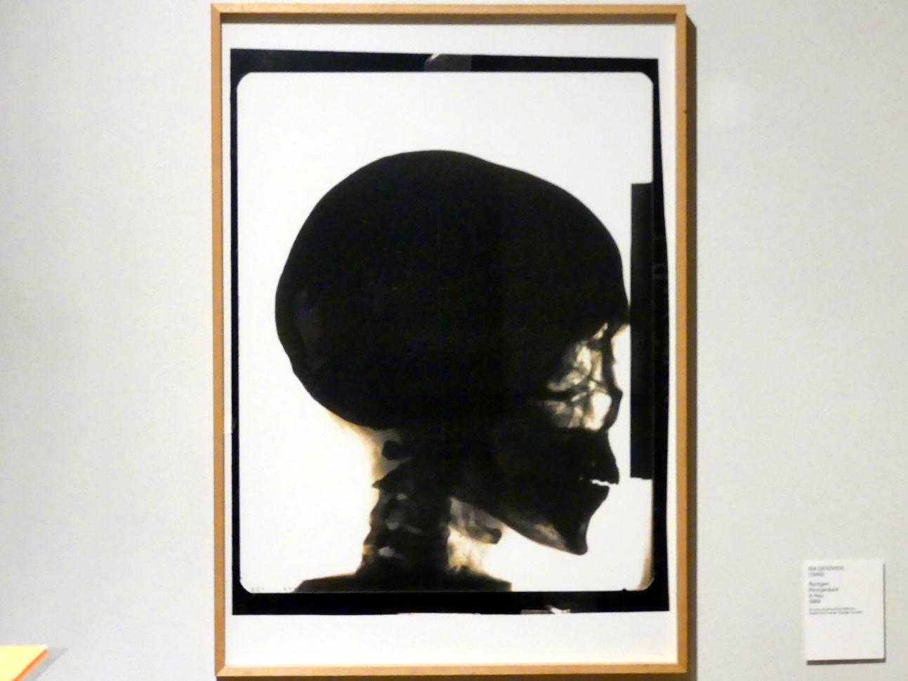 Isa Genzken: Röntgenbild, 1989