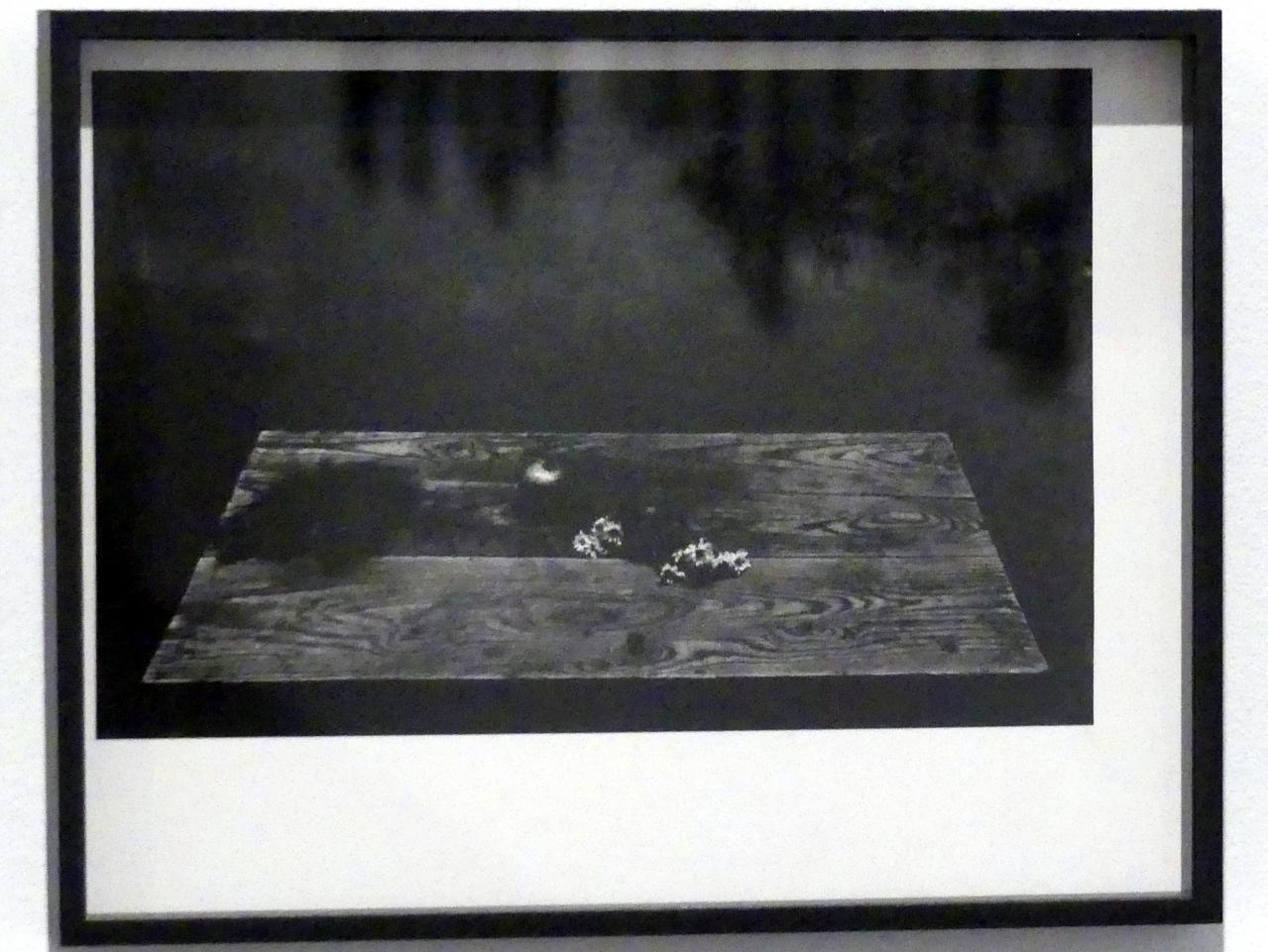 Francisco Gómez: Stillleben mit Granatapfel und Gänseblümchen, 1962