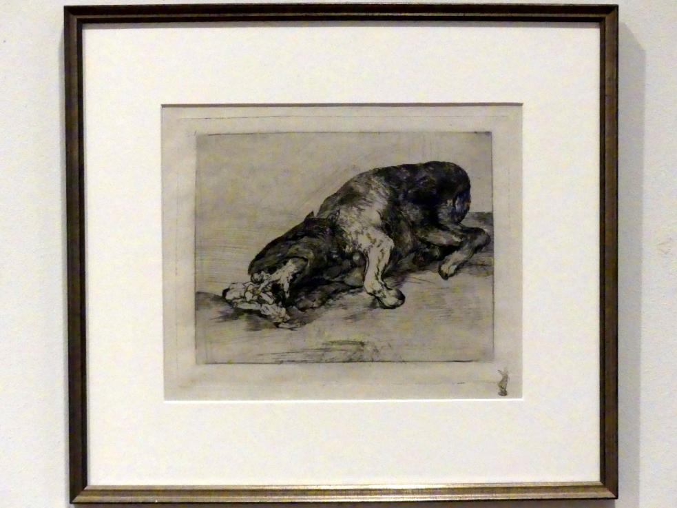 Francisco de Goya (Francisco José de Goya y Lucientes): Wildes Ungeheuer, um 1815 - 1820