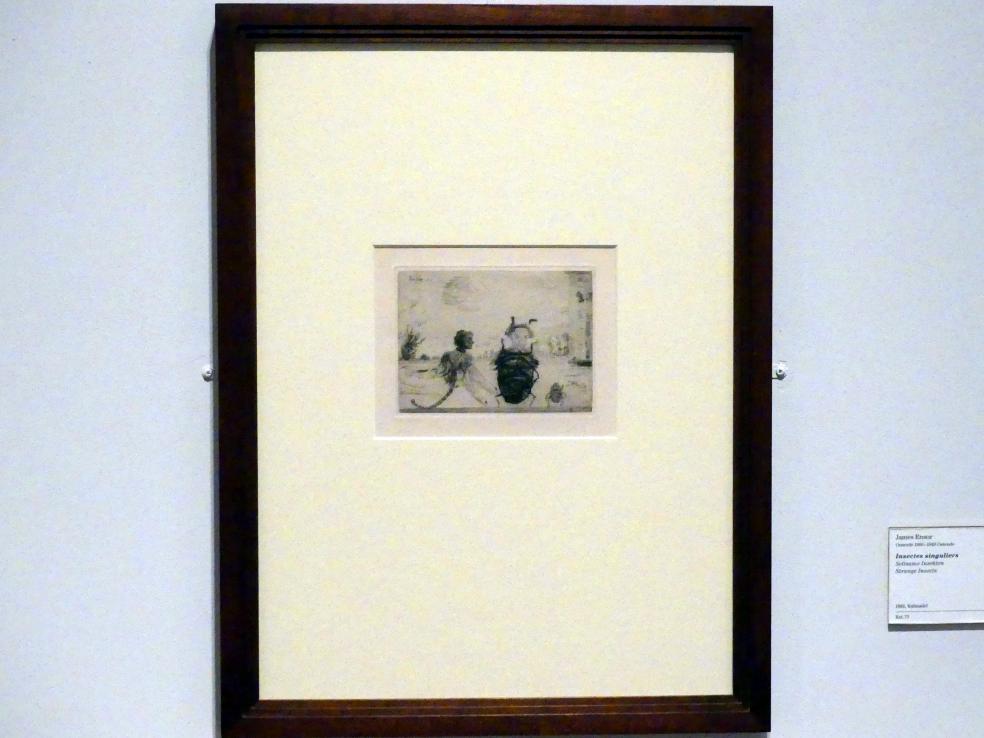 James Ensor: Seltsame Insekten, 1888