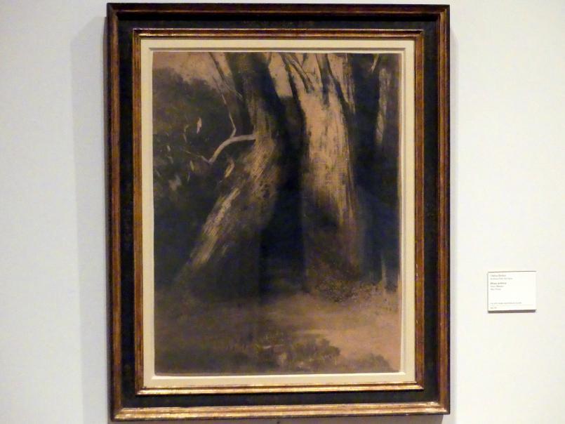 Odilon Redon: Zwei Bäume, um 1875