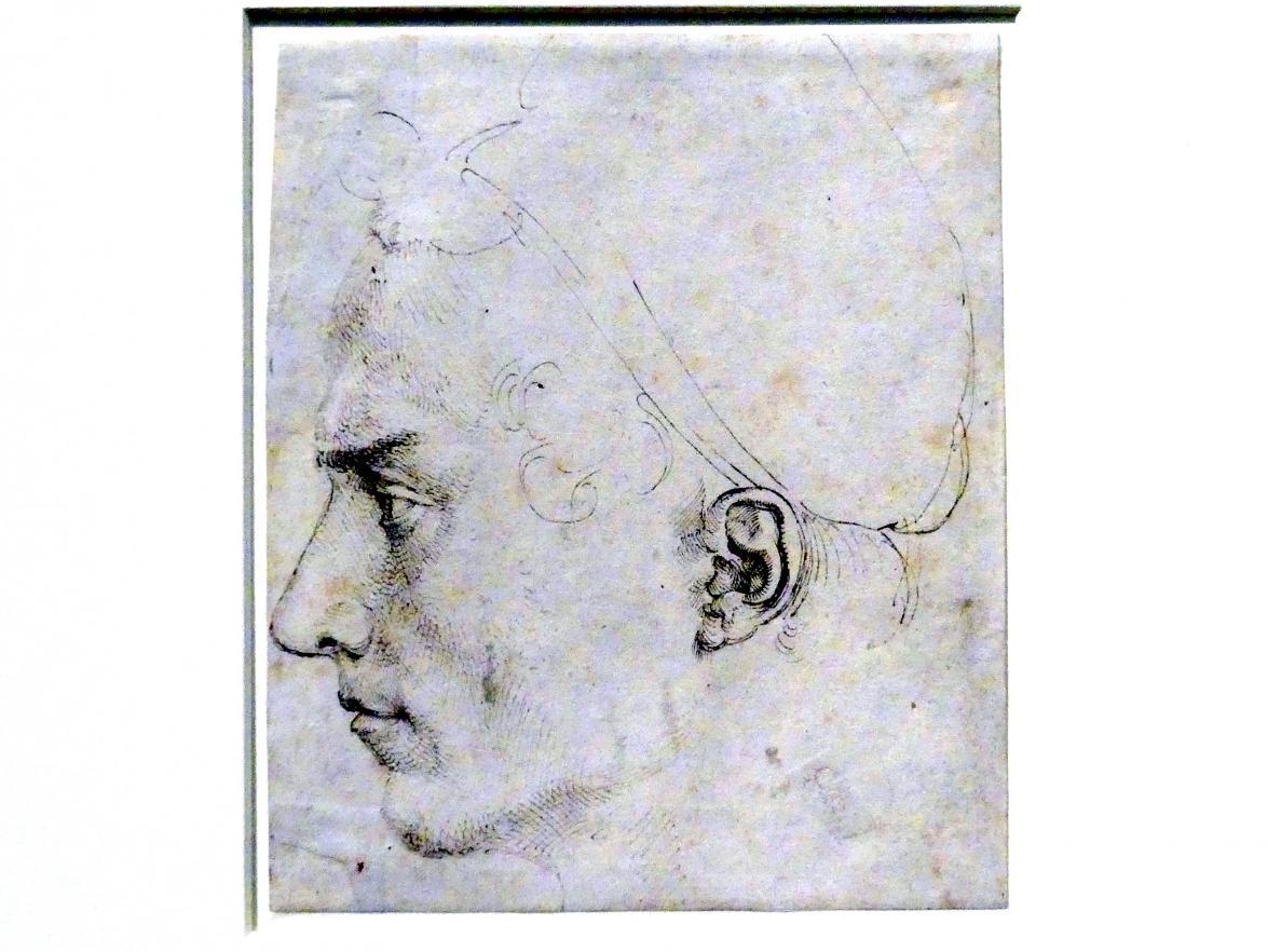 Albrecht Dürer: Männlicher Profilkopf, um 1503 - 1505